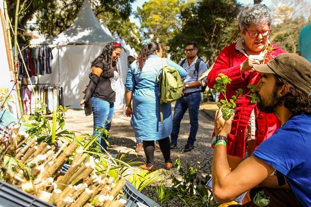 O processo de revitalização segue até hoje, já com 15 hectares de agrofloresta / Foto: Lia Bianchini